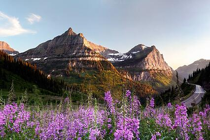 image of Montana in Summer